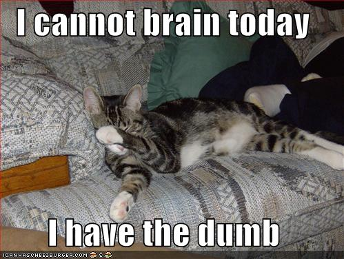 cannot-brain-today